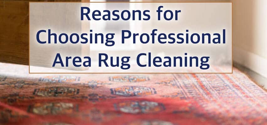 choosing-professional-area-rug-cleaning