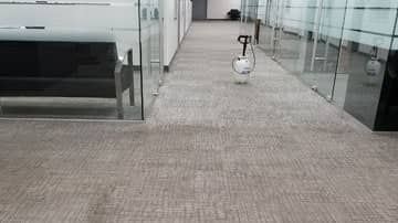 carpet steam cleaning in encino