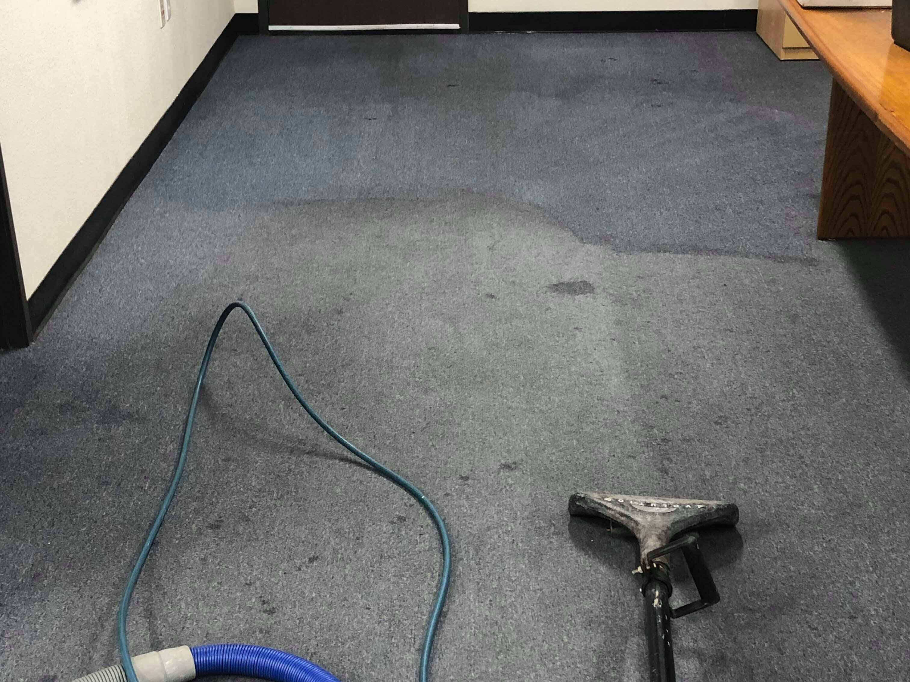 professional carpet cleaning burbank