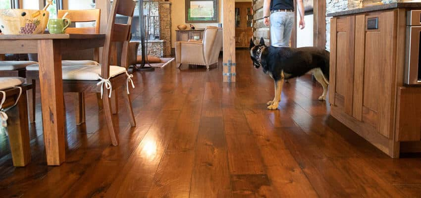 pet-friendly-hardwood-cleaning-pacific-palisades